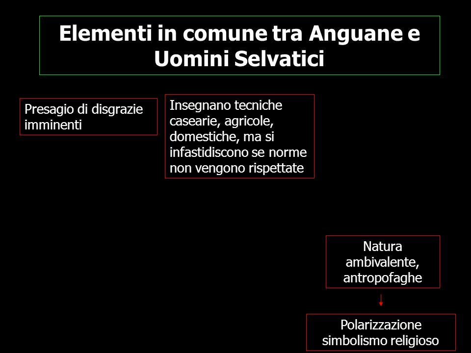 Elementi in comune tra Anguane e Uomini Selvatici