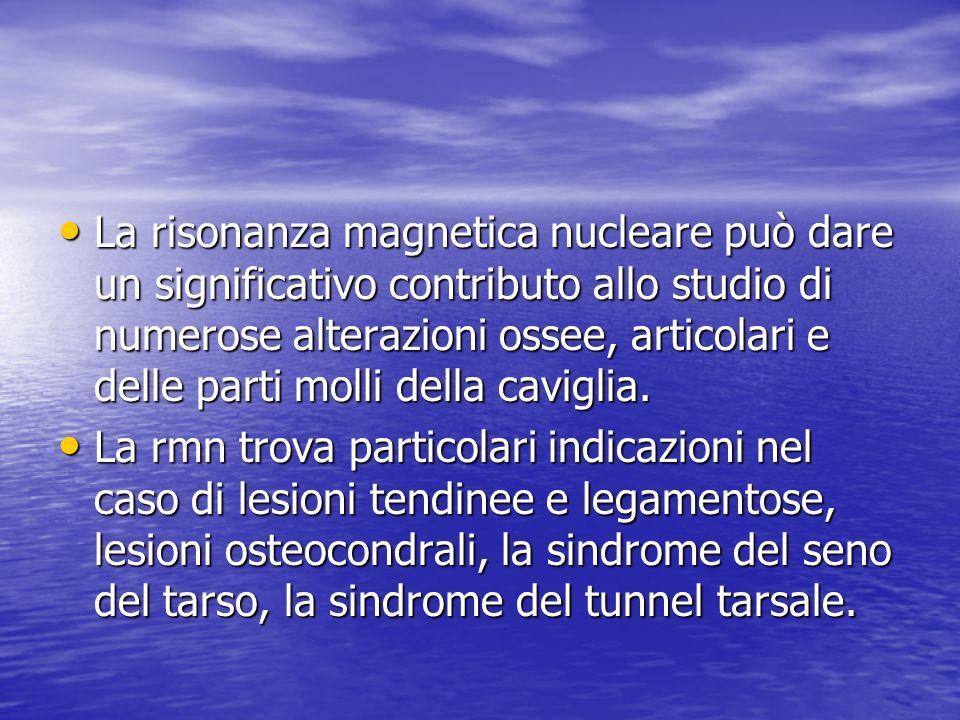 La risonanza magnetica nucleare può dare un significativo contributo allo studio di numerose alterazioni ossee, articolari e delle parti molli della caviglia.