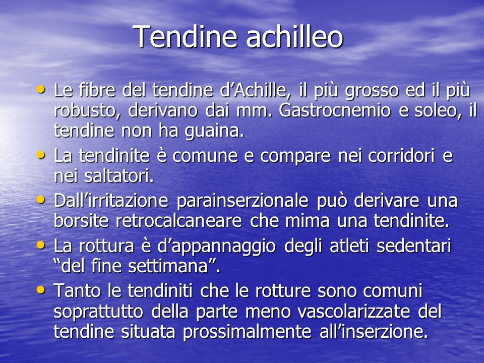 Tendine achilleo Le fibre del tendine d'Achille, il più grosso ed il più robusto, derivano dai mm. Gastrocnemio e soleo, il tendine non ha guaina.