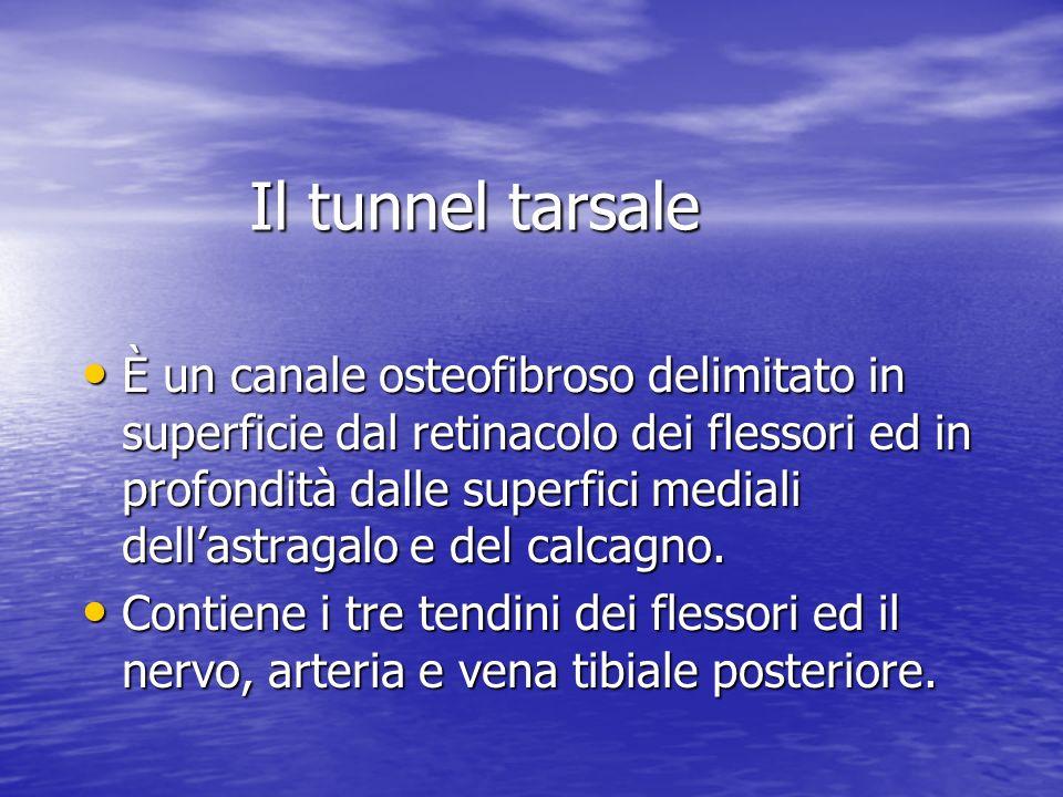 Il tunnel tarsale