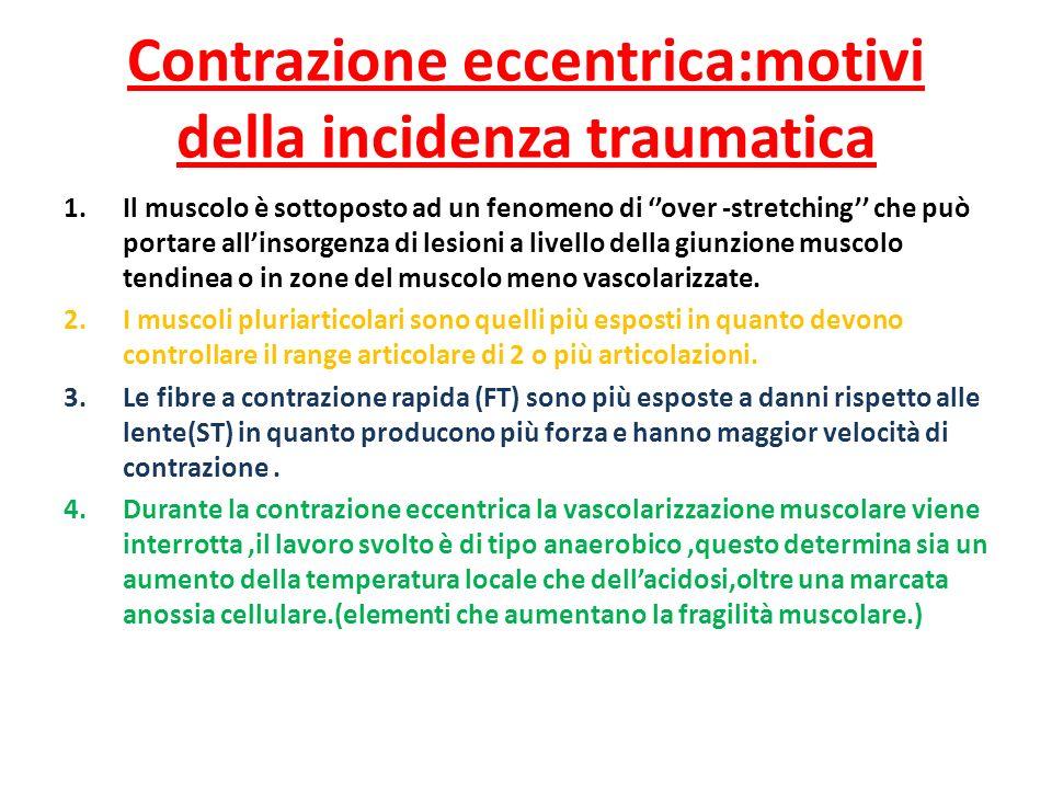 Contrazione eccentrica:motivi della incidenza traumatica