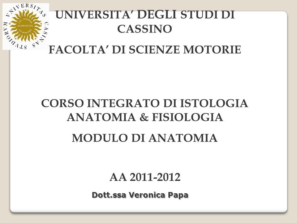 UNIVERSITA' DEGLI STUDI DI CASSINO FACOLTA' DI SCIENZE MOTORIE