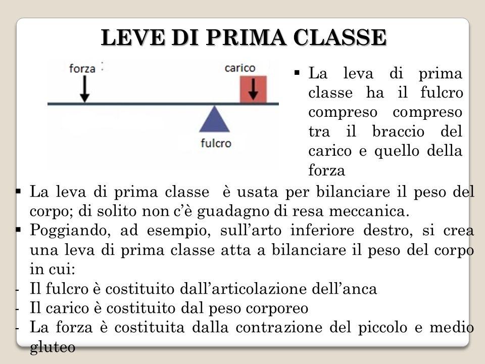 LEVE DI PRIMA CLASSE La leva di prima classe ha il fulcro compreso compreso tra il braccio del carico e quello della forza.