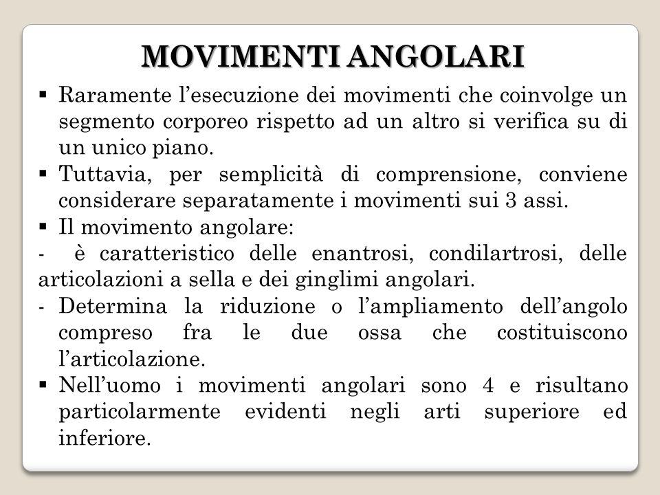 MOVIMENTI ANGOLARI Raramente l'esecuzione dei movimenti che coinvolge un segmento corporeo rispetto ad un altro si verifica su di un unico piano.