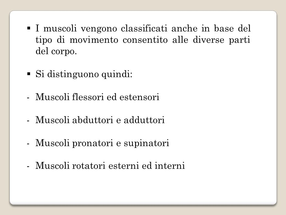 I muscoli vengono classificati anche in base del tipo di movimento consentito alle diverse parti del corpo.