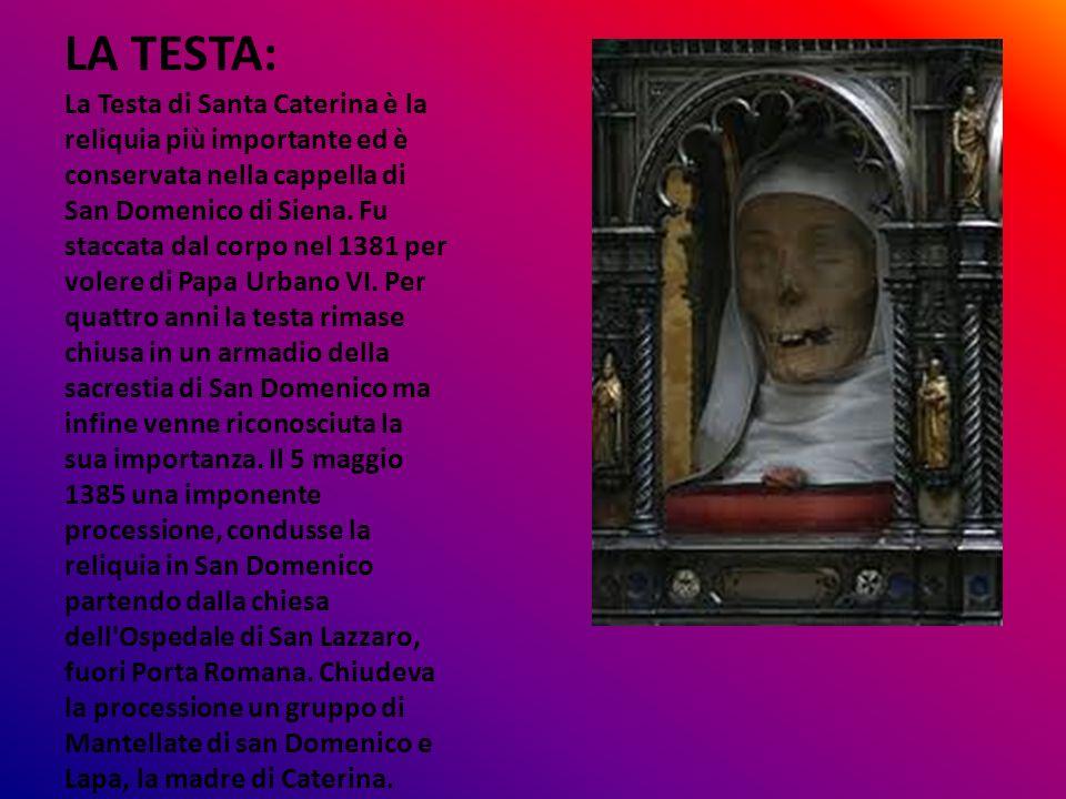 LA TESTA: