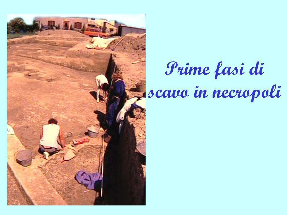 Prime fasi di scavo in necropoli