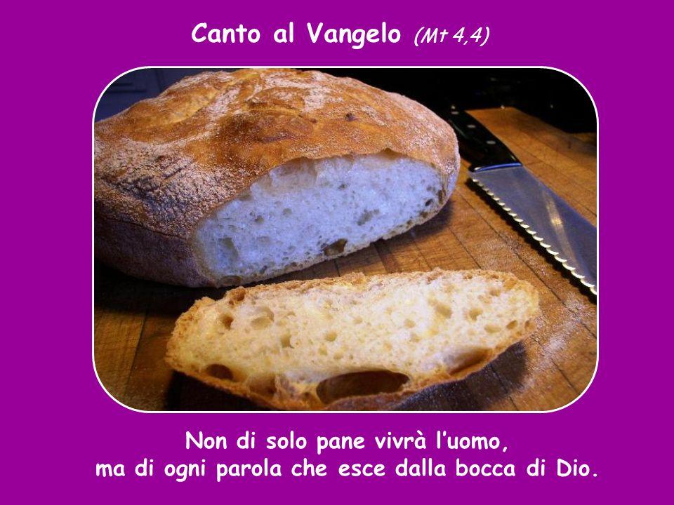 Canto al Vangelo (Mt 4,4) Non di solo pane vivrà l'uomo, ma di ogni parola che esce dalla bocca di Dio.