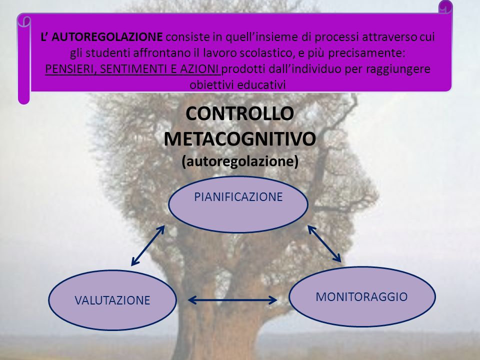 CONTROLLO METACOGNITIVO