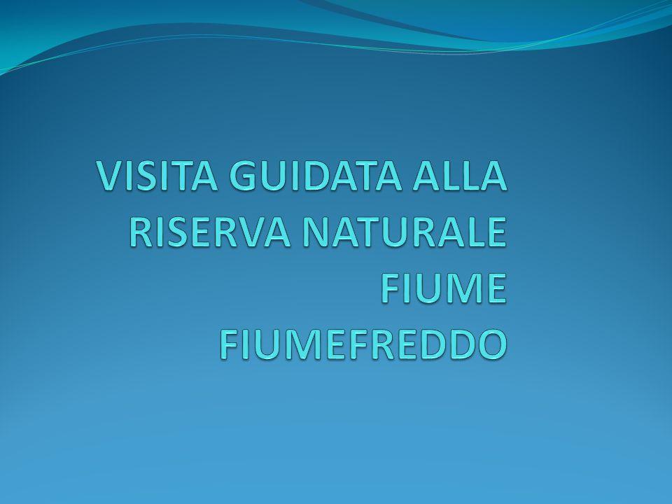 VISITA GUIDATA ALLA RISERVA NATURALE FIUME FIUMEFREDDO