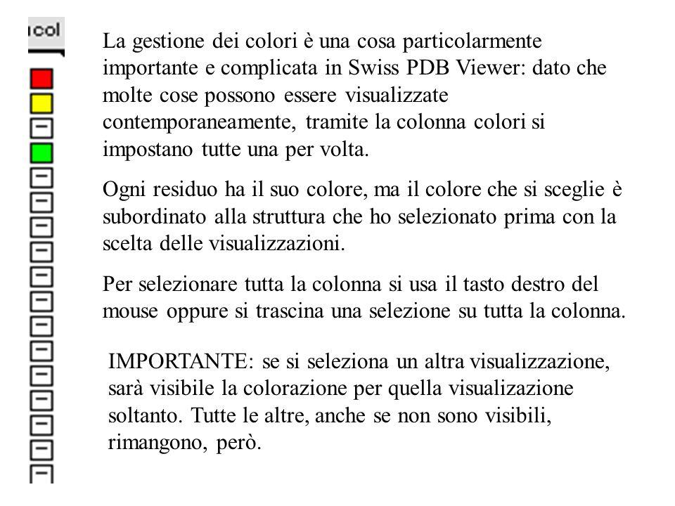 La gestione dei colori è una cosa particolarmente importante e complicata in Swiss PDB Viewer: dato che molte cose possono essere visualizzate contemporaneamente, tramite la colonna colori si impostano tutte una per volta.