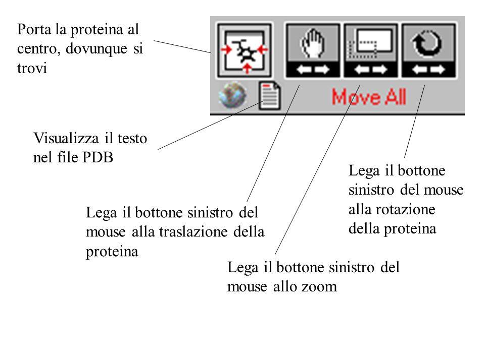 Porta la proteina al centro, dovunque si trovi