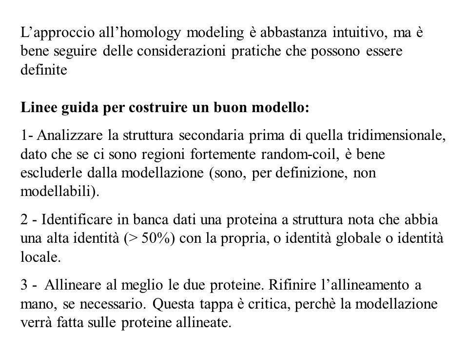 L'approccio all'homology modeling è abbastanza intuitivo, ma è bene seguire delle considerazioni pratiche che possono essere definite Linee guida per costruire un buon modello: