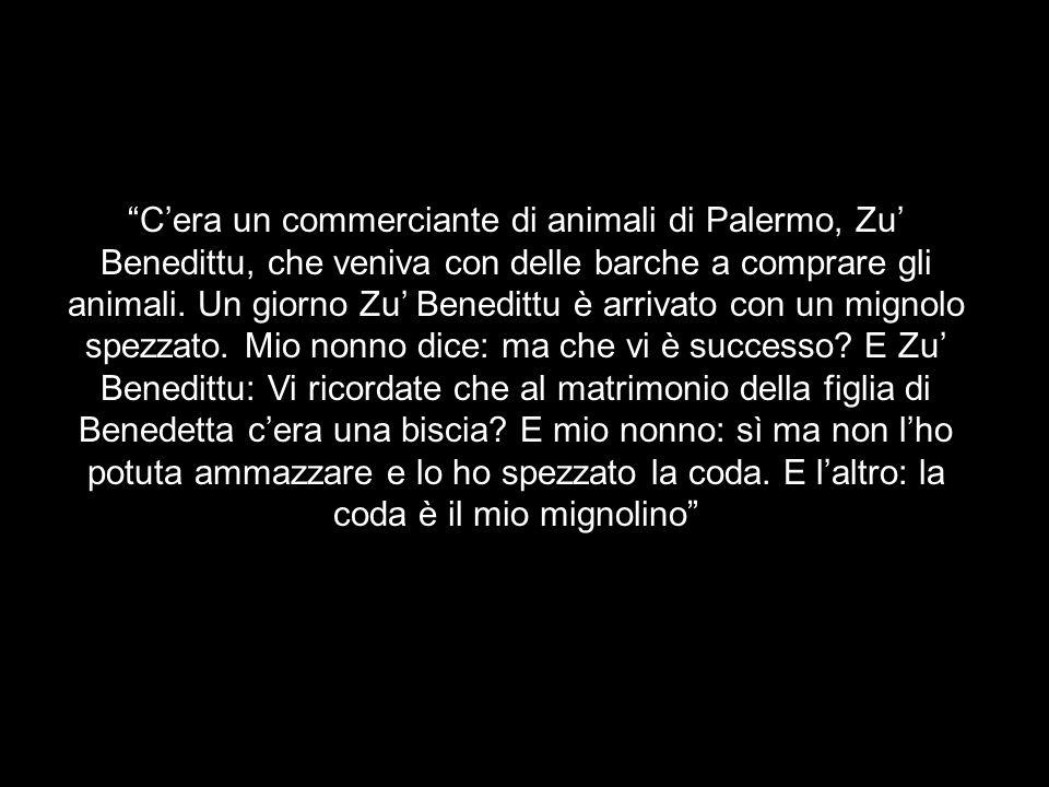 C'era un commerciante di animali di Palermo, Zu' Benedittu, che veniva con delle barche a comprare gli animali.