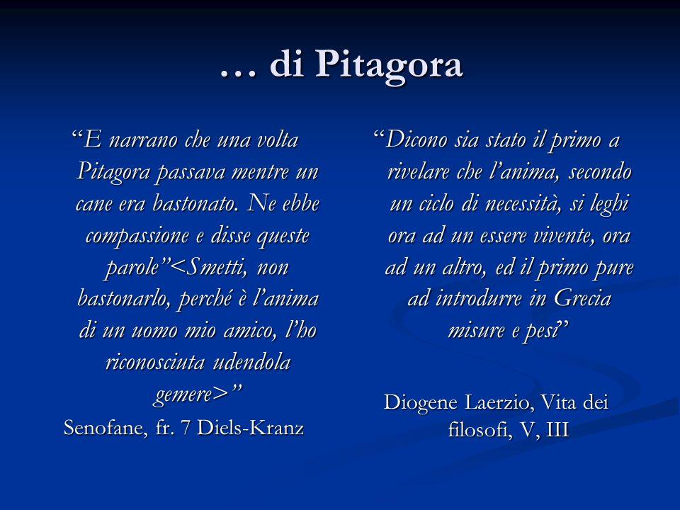 … di Pitagora