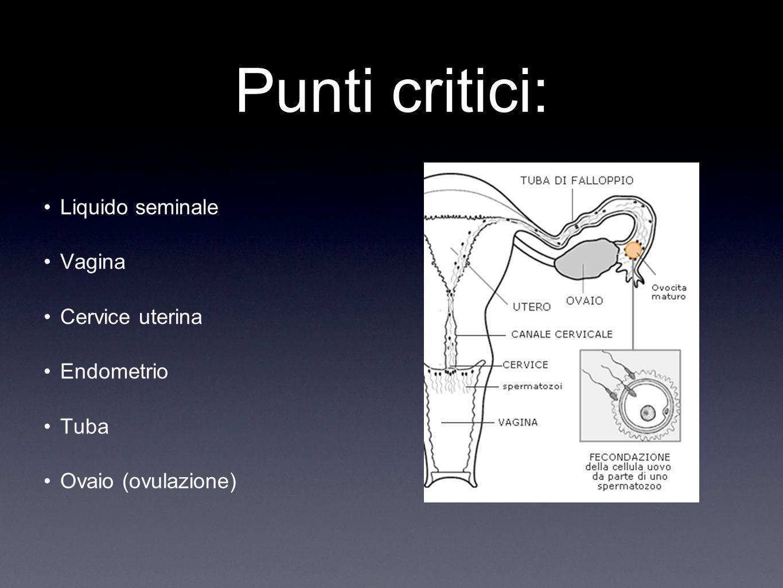 Punti critici: Liquido seminale Vagina Cervice uterina Endometrio Tuba