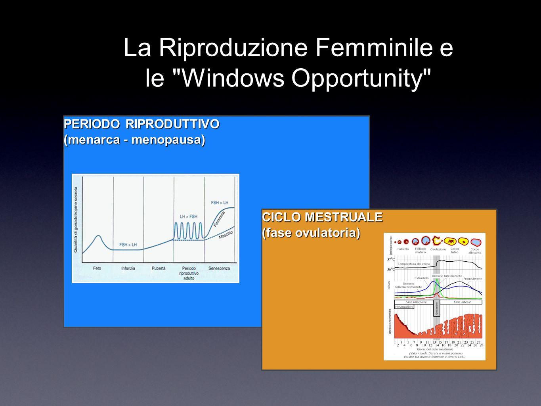 La Riproduzione Femminile e le Windows Opportunity