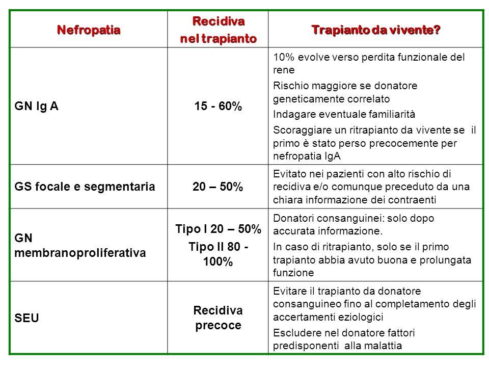 GS focale e segmentaria 20 – 50%