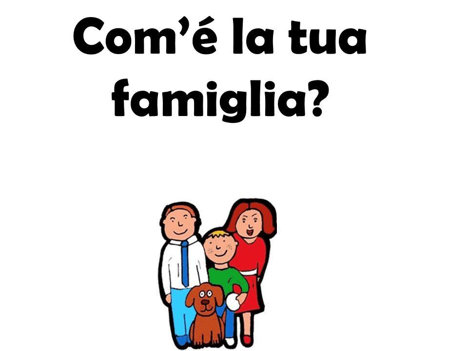 Com'é la tua famiglia
