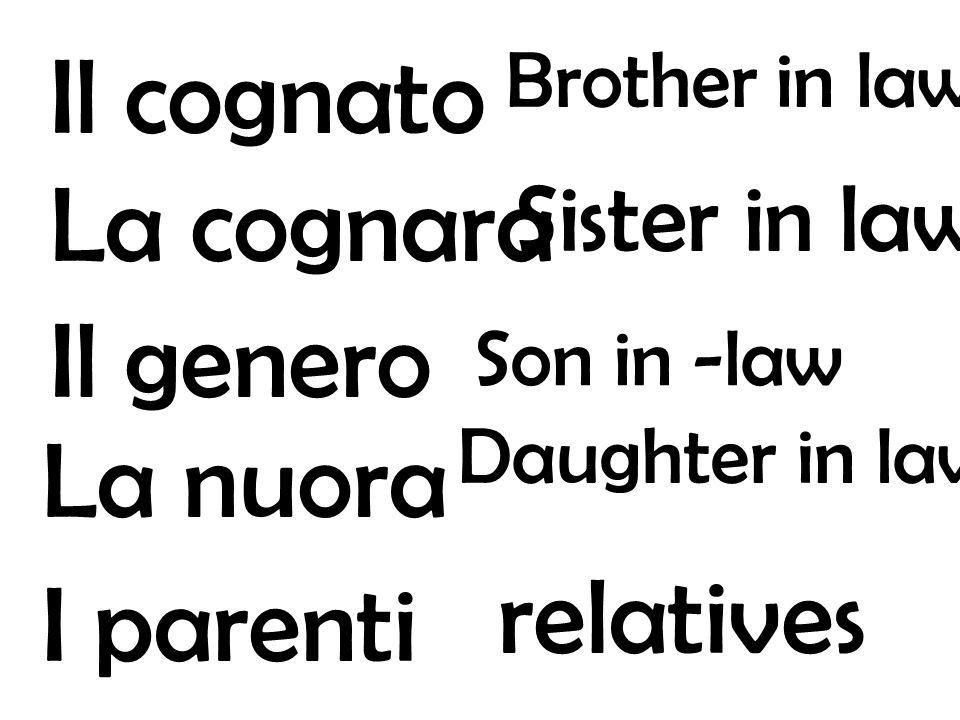 Il cognato La cognara Il genero La nuora relatives I parenti
