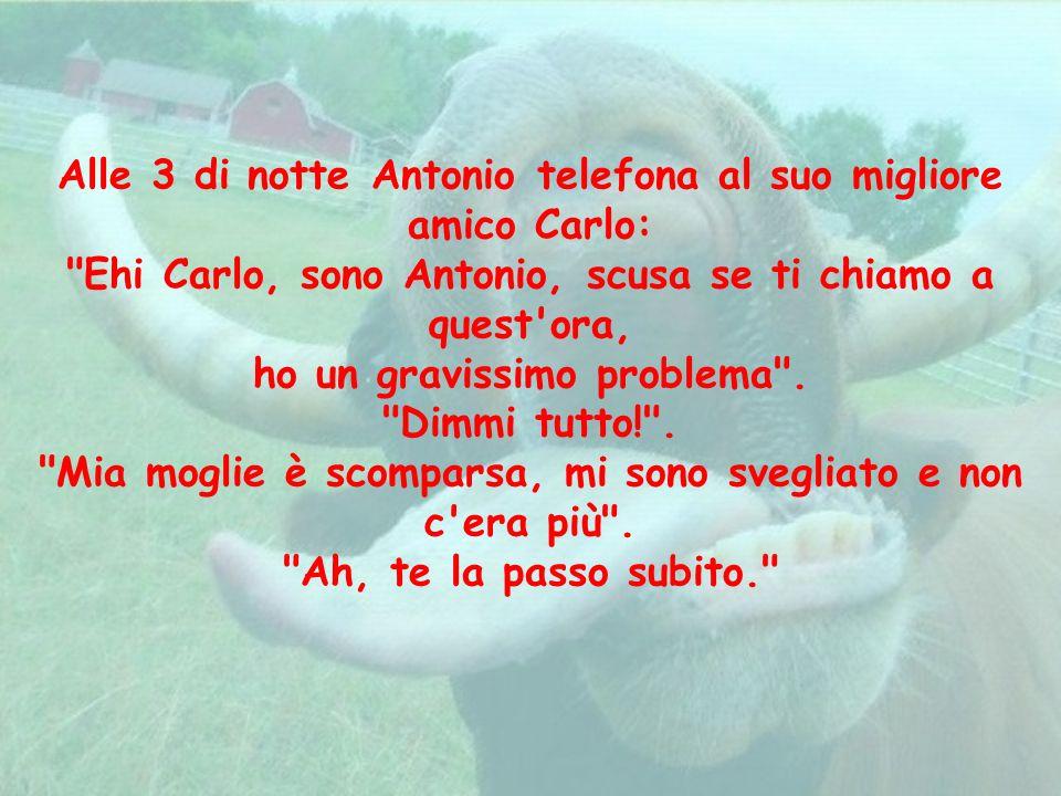 Alle 3 di notte Antonio telefona al suo migliore amico Carlo: Ehi Carlo, sono Antonio, scusa se ti chiamo a quest ora,