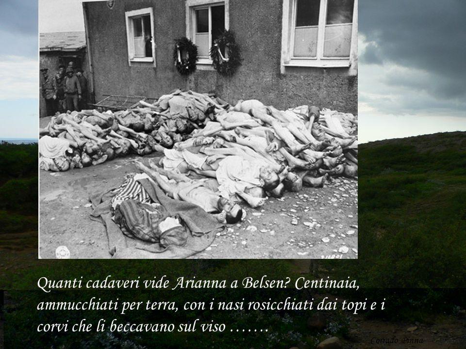 Quanti cadaveri vide Arianna a Belsen