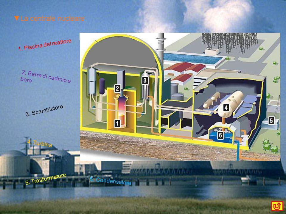 ▼La centrale nucleare 1. Piscina del reattore