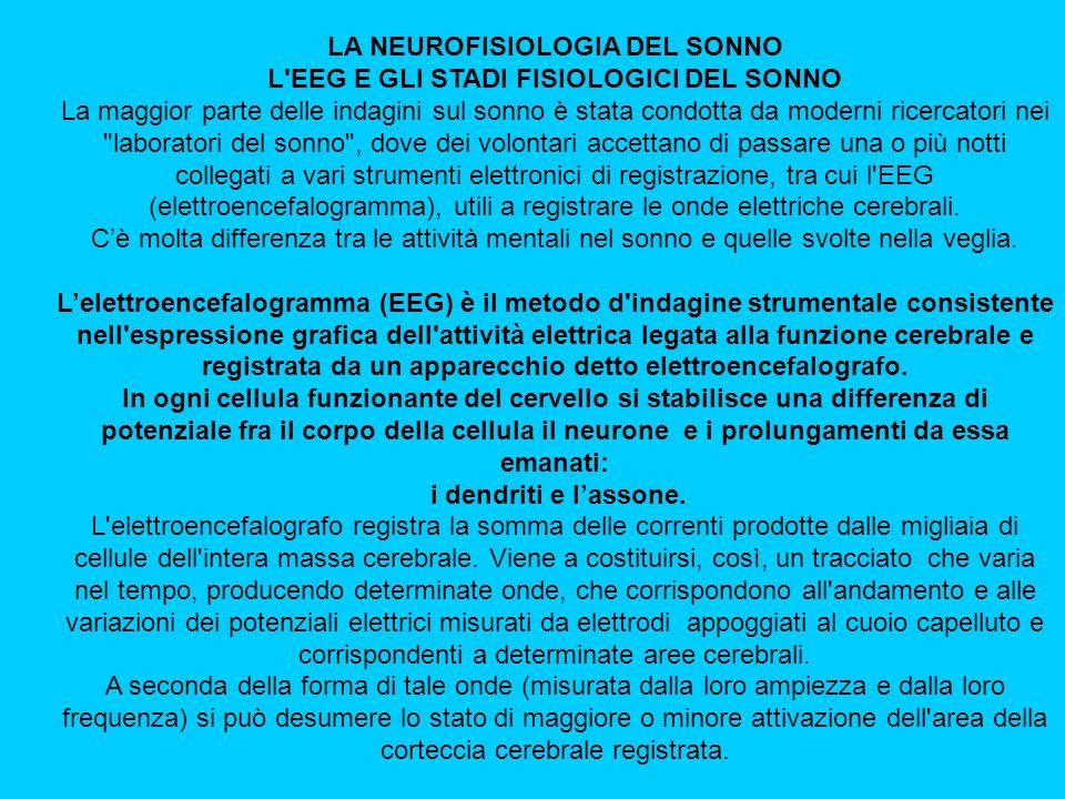 LA NEUROFISIOLOGIA DEL SONNO L EEG E GLI STADI FISIOLOGICI DEL SONNO