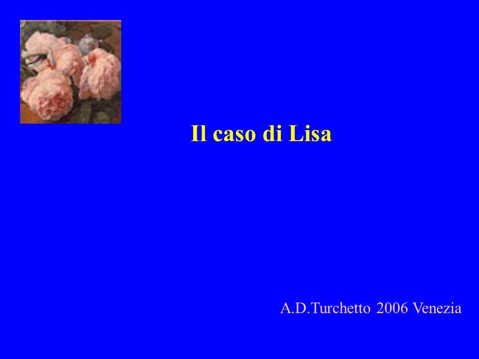 Il caso di Lisa A.D.Turchetto 2006 Venezia