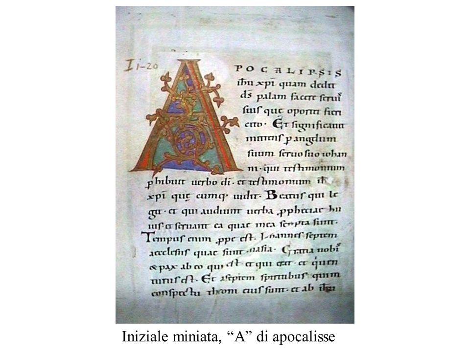 Iniziale miniata, A di apocalisse