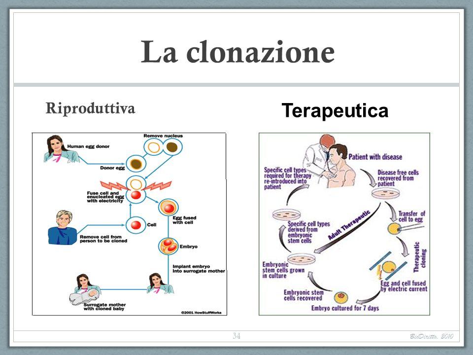 La clonazione Terapeutica Riproduttiva