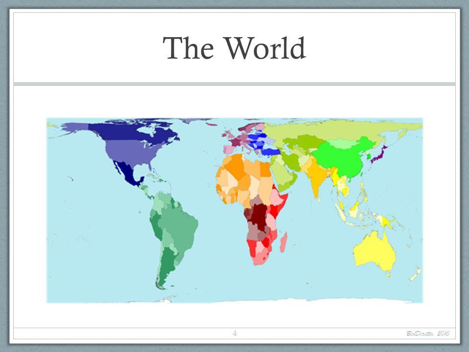 The World BioDiritto, 2010