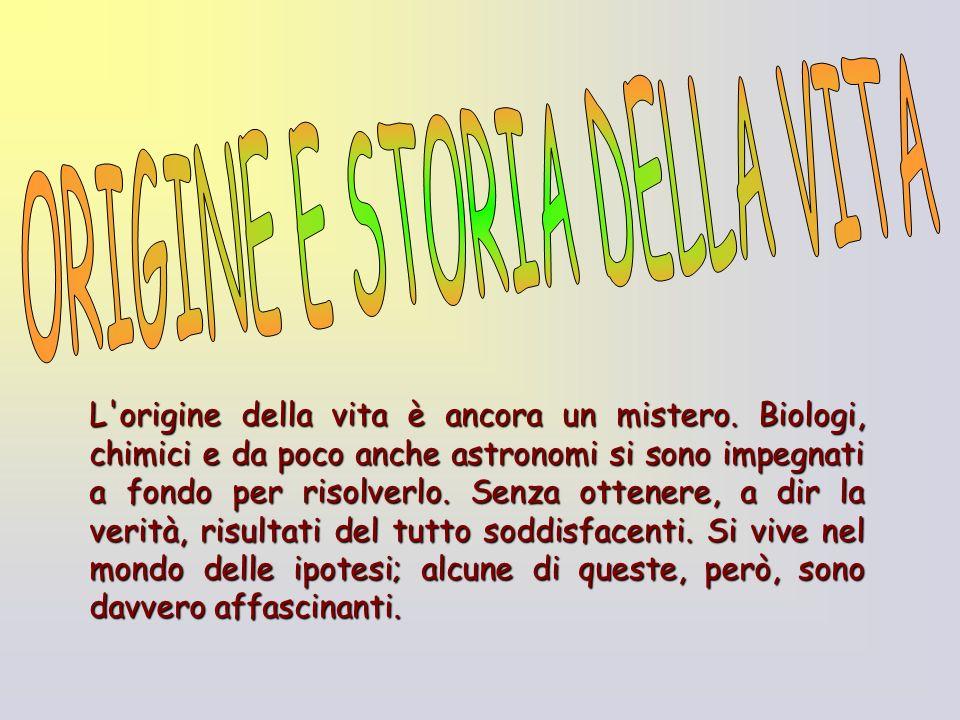 ORIGINE E STORIA DELLA VITA