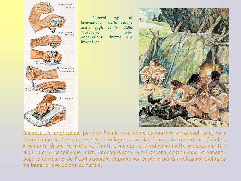 Diversi tipi di lavorazione delle pietre usati dagli uomini della Preistoria : dalla percussione diretta alla levigatura.