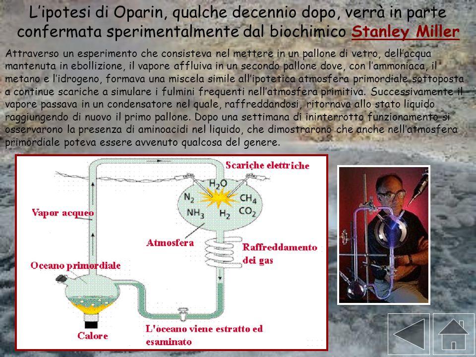 L'ipotesi di Oparin, qualche decennio dopo, verrà in parte confermata sperimentalmente dal biochimico Stanley Miller