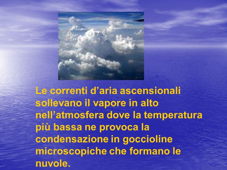 Le correnti d'aria ascensionali sollevano il vapore in alto nell'atmosfera dove la temperatura più bassa ne provoca la condensazione in goccioline microscopiche che formano le nuvole.