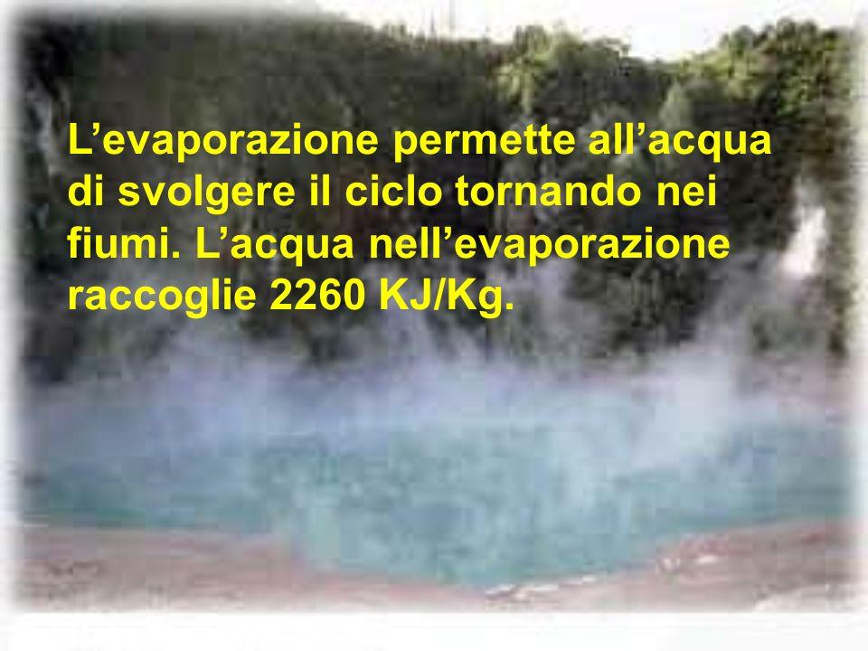 L'evaporazione permette all'acqua di svolgere il ciclo tornando nei fiumi.