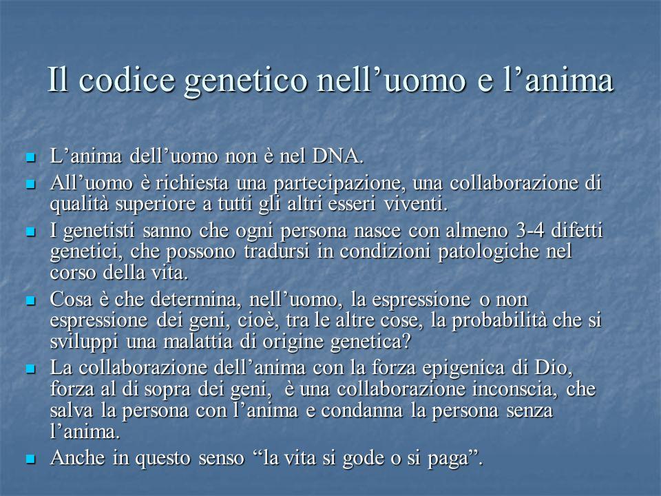 Il codice genetico nell'uomo e l'anima