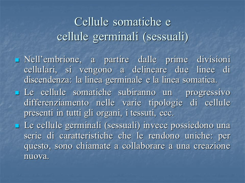 Cellule somatiche e cellule germinali (sessuali)