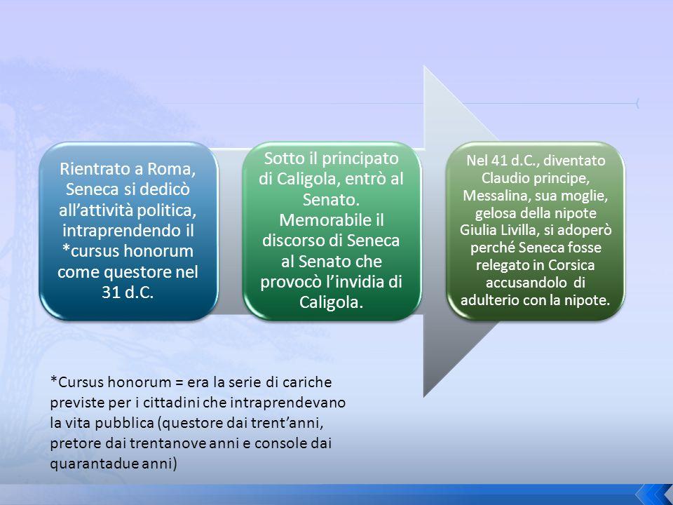 Rientrato a Roma, Seneca si dedicò all'attività politica, intraprendendo il *cursus honorum come questore nel 31 d.C.