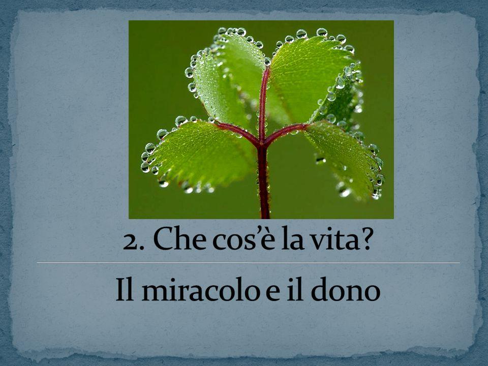2. Che cos'è la vita Il miracolo e il dono