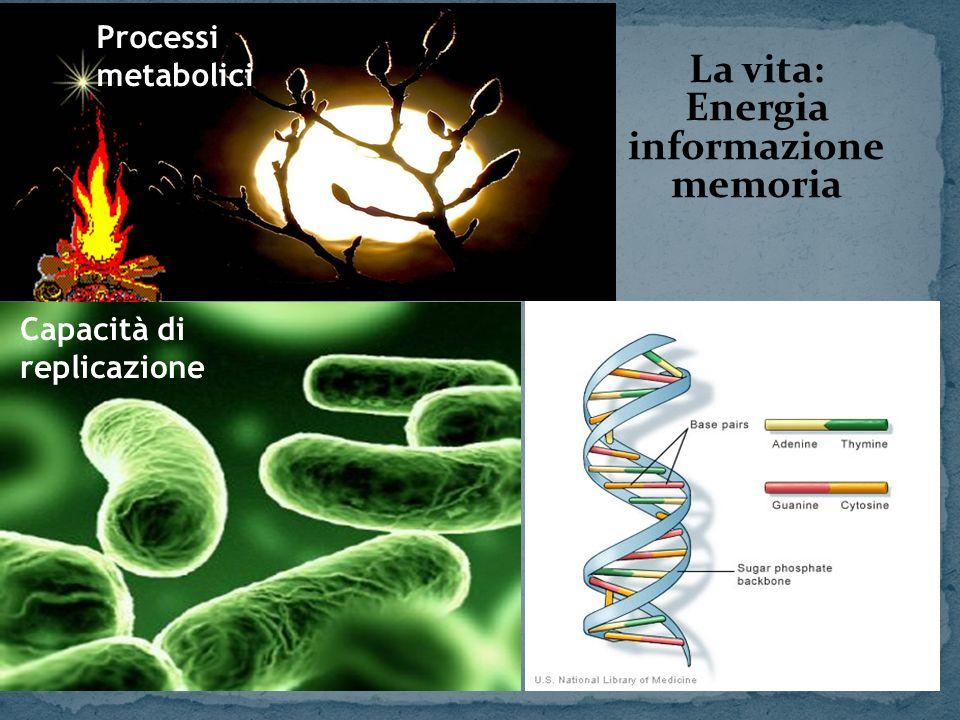 La vita: Energia informazione memoria