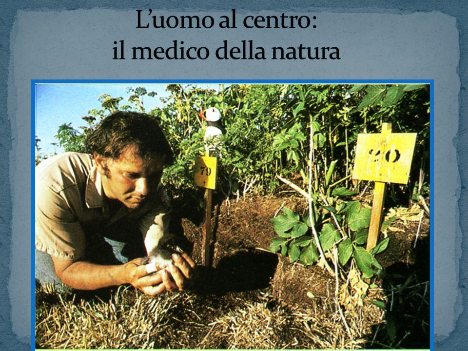 L'uomo al centro: il medico della natura
