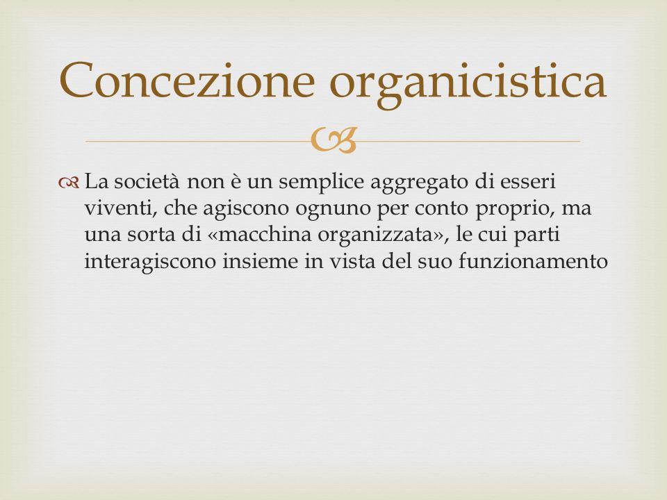 Concezione organicistica