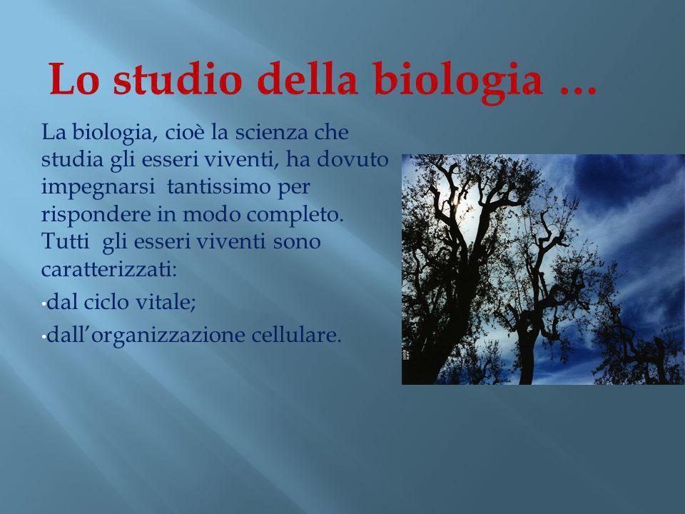 Lo studio della biologia …