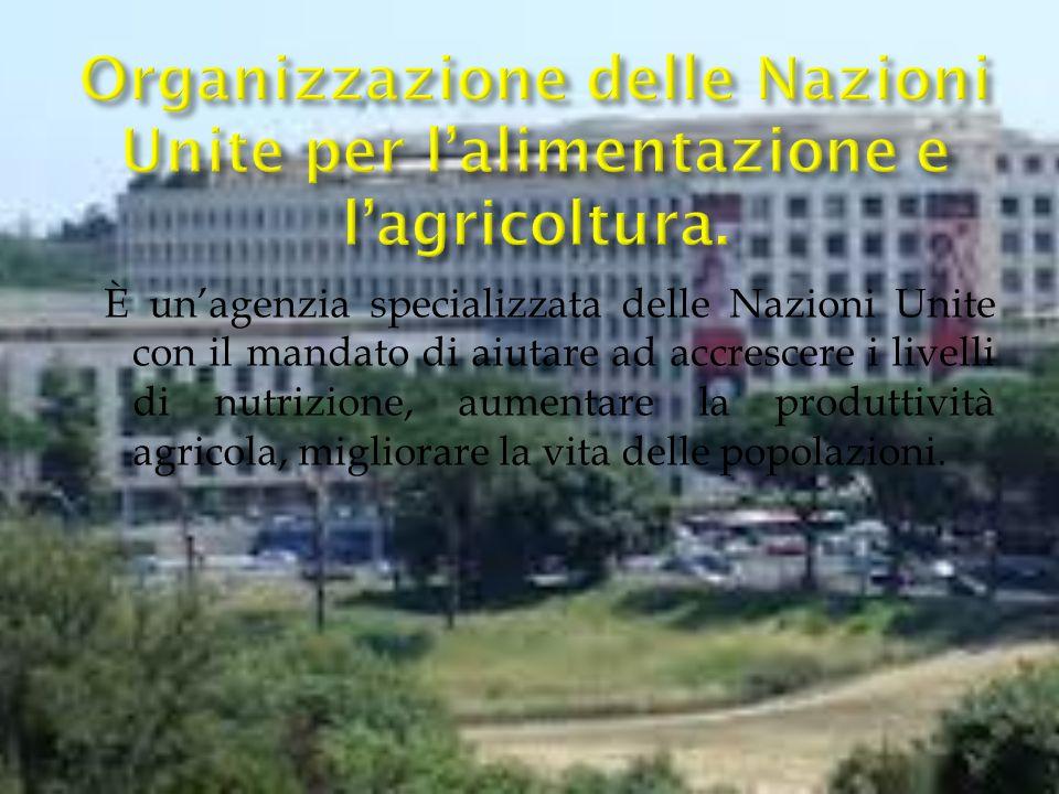 Organizzazione delle Nazioni Unite per l'alimentazione e l'agricoltura.