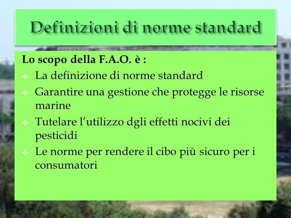 Definizioni di norme standard