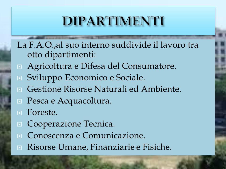 DIPARTIMENTI La F.A.O.,al suo interno suddivide il lavoro tra otto dipartimenti: Agricoltura e Difesa del Consumatore.