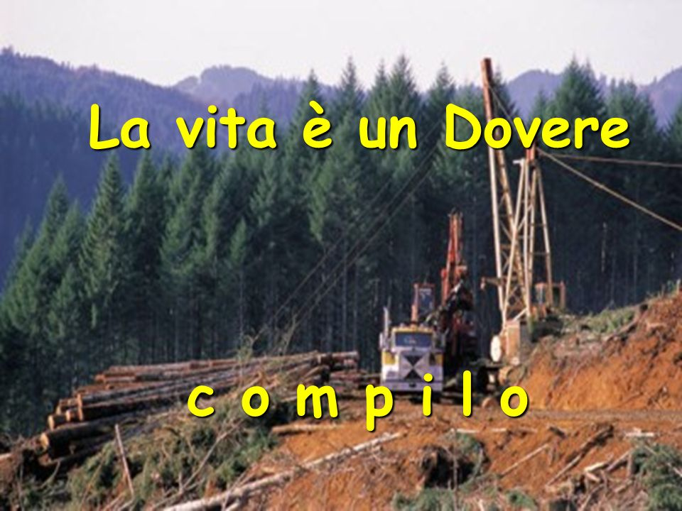 La vita è un Dovere c o m p i l o