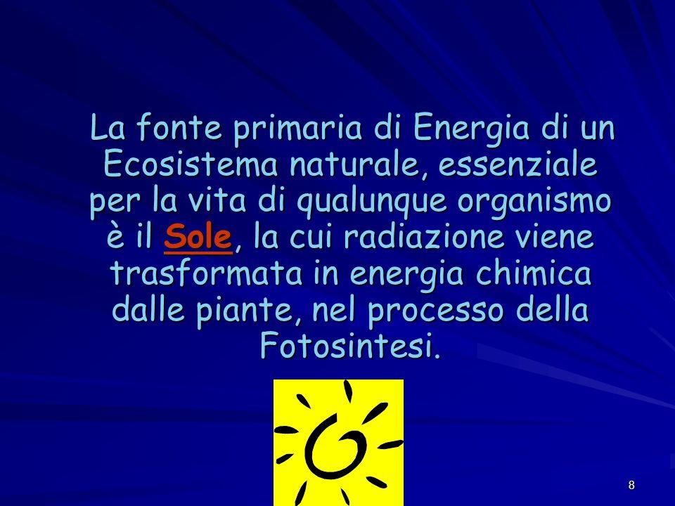 La fonte primaria di Energia di un Ecosistema naturale, essenziale per la vita di qualunque organismo è il Sole, la cui radiazione viene trasformata in energia chimica dalle piante, nel processo della Fotosintesi.